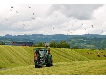 Traktor på eng. Gras-slått. Foto