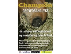 Champion Grovforanalyse