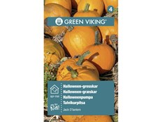 Green Viking Frø Gresskar halloween