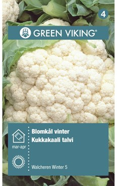 Green Viking Frø Blomkål vinter