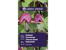 Green Viking Blodbeger
